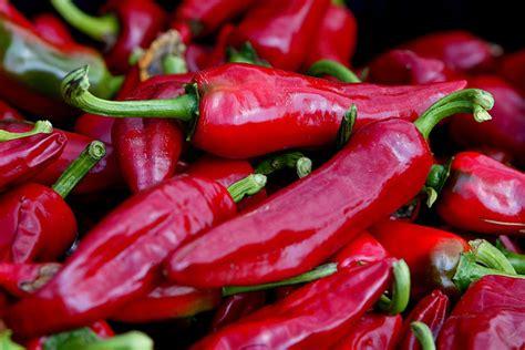carré cuisine piments forts piments doux piments rouges poivrons