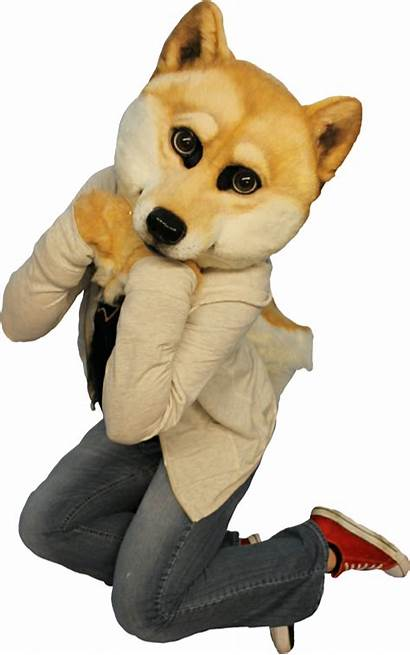 Furry Doge Cringe Dogelore Want Those Template