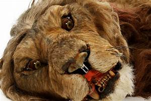 Information about Jumanji Lion Attack - yousense info