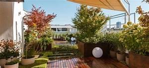 Welche Pflanzen Eignen Sich Als Sichtschutz : gel st dachterrasse garage welche tr ge welche pflanzen als sichtschutz gartenforum auf ~ Sanjose-hotels-ca.com Haus und Dekorationen