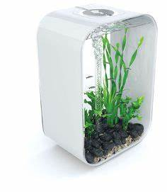 Petit Aquarium Design : 70 best interior water accents images indoor fountain ~ Melissatoandfro.com Idées de Décoration