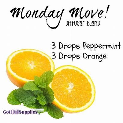 Diffuser Essential Orange Blend Peppermint Oils Monday