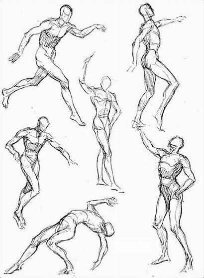 Drawing Loomis Humana Figura Andrew Poses Human