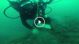 NZ scientists eavesdrop on sounds from the deep | 1 NEWS ...