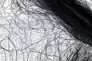 Black And White Hairs  Or Wires  As An Abstract Background