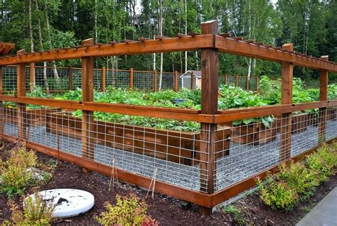 Hog Wire Fence Panels Idea