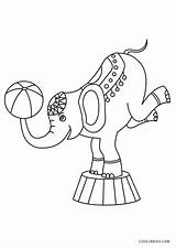 Circus Coloring Pages Elephant Printable sketch template