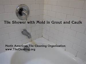 Cleaning mold in shower tile and groutmight need a for Best way to clean mold off shower grout