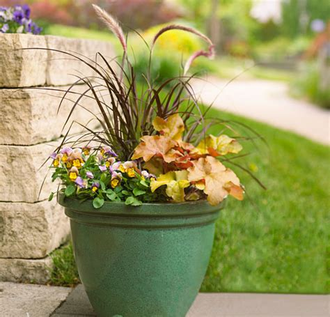 fall flower pot ideas fall container gardens