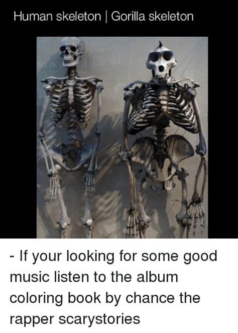 Skeleton Meme Skeleton Memes Of 2017 On Sizzle Doot Doot