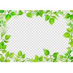 Leaf Clipart Borders Border Leaves Transparent Clip