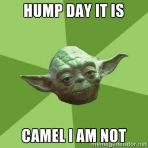Sexy Hump Day Memes - most funny hump day meme