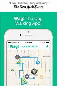 the 25 best dog walking business ideas on pinterest dog With dog babysitting app