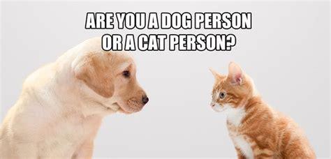 quiz     dog person   cat person smooth