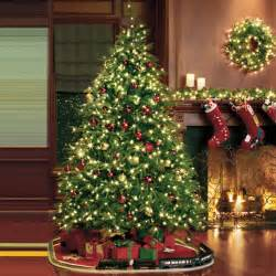 redmond spruce treetime christmas tree designs traditional christmas trees chicago by