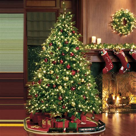 redmond spruce treetime christmas tree designs