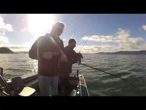Wellington Harbour Boat Fishing Spots by Wellington Harbour Winter Fishing Youtube