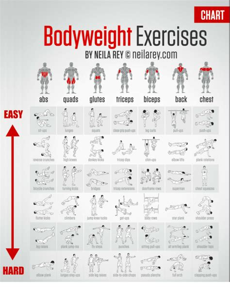 chart bodyweight exercises  neila rey neilareycom abs quads glutes triceps biceps  chest