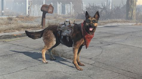 fallout  dogmeat wins top video game dog award