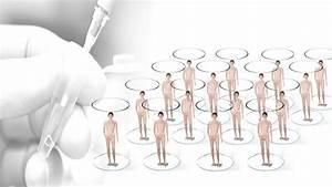 China  U0026quot Clone Factory U0026quot  Scientist Eyes Human Cloning