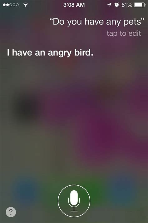 funniest siri answers       iphone