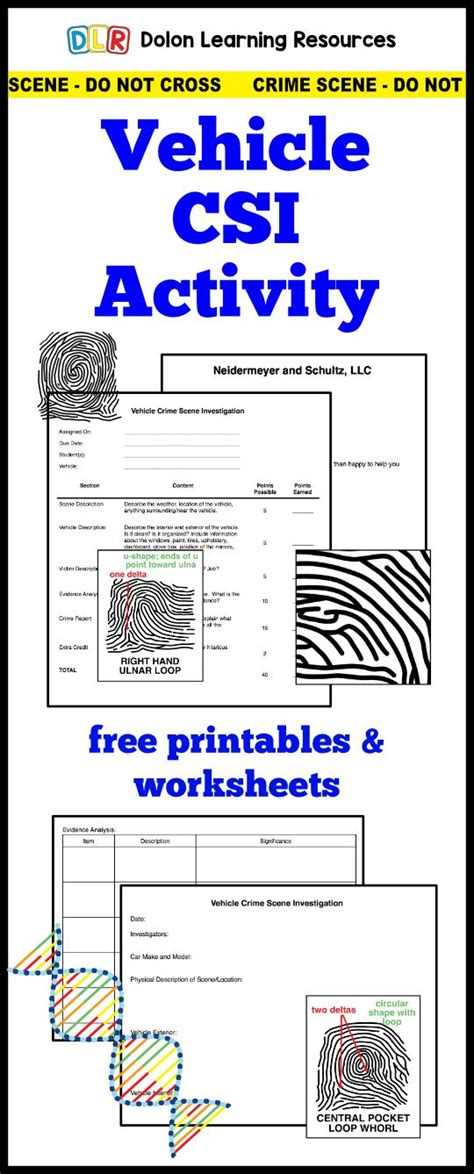 forensic science activity  worksheets teaching