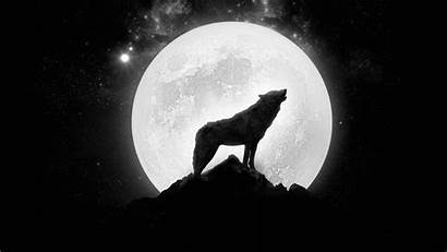 Moon Wolf Howling Wallpapers Wallpaperup