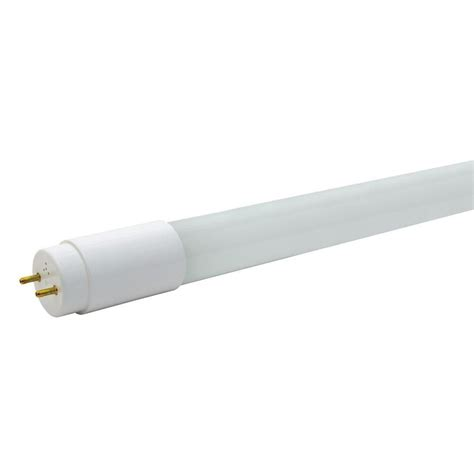 shop ge 8 pack 32 w equivalent cool white t8 led
