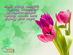love quotes in tamil messages greetings and wishes ...