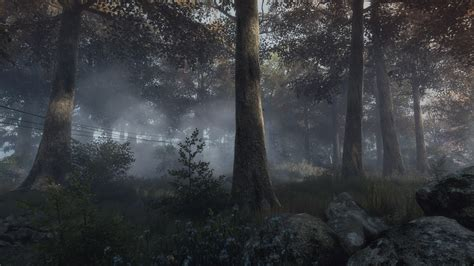 vanishing  ethan carter video games forest