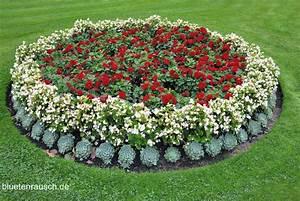 Blumenbeete Zum Nachpflanzen : blumenbeete gestalten bl tenrausch ~ Yasmunasinghe.com Haus und Dekorationen