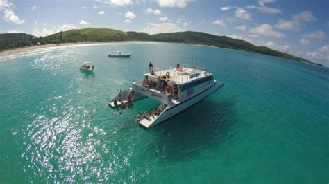 Best Catamaran Tour In Puerto Rico by Best Snorkeling And Sailing Trip Pr Picture Of East