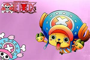 One Piece: All Chopper Transformations - YouTube