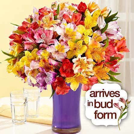 send peruvian lilies flowers birthday gift  usa