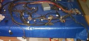 1997 F150 Engine Wiring Harness