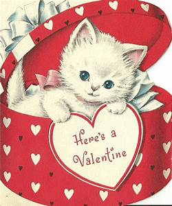 Happy Valentine's Day Kitty-Style - Life With Cats