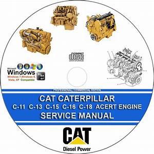 Cat Caterpillar C