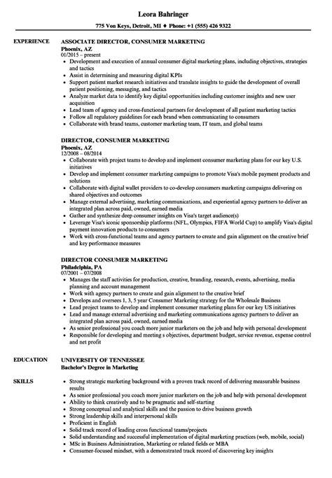 data analyst description resume 1 3 cup resume
