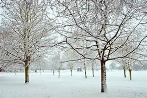 Winter Season Essay In Urdu Sardi Ka Mausam Poetry Mausam ...