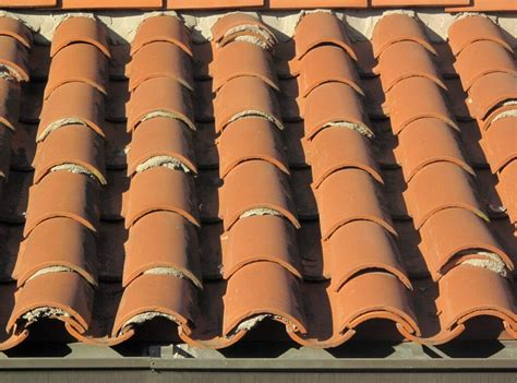 tile roof  safely cleaned  tiles