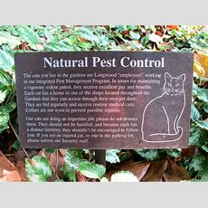 Natural Garden Pest Control  Homestead Backyard