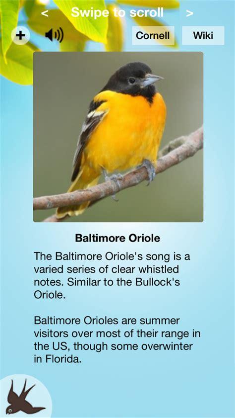 chirp bird song usa ios