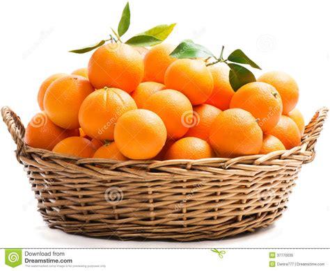 oranges   basket royalty  stock photo image
