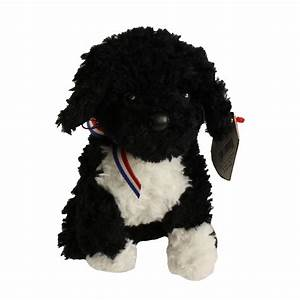 TY Beanie Baby 2.0 - BO the Portuguese Water Dog (6 inch ...