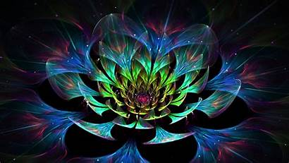 Abstract Flower Lotus Colorful Wallpapers