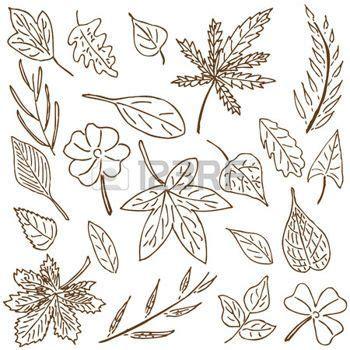 hojas de otoño dibujo: Dibujado a mano recogida dibujo de