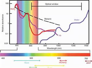 The Optical Window  The Efficiency Of Light Transmission