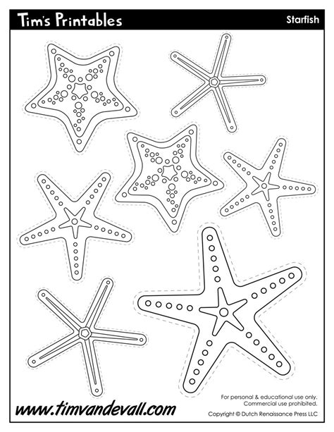 starfish template sea star templates  preschool art
