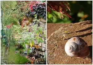 Garten Im Oktober : blick durchs schl sselloch spaziergang durch den ~ Lizthompson.info Haus und Dekorationen