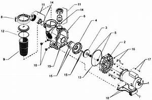 Jandy Phpf Phpm  Plushp Pool Pump Parts Diagram